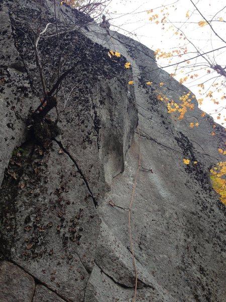 Rock Climbing Photo: 1893