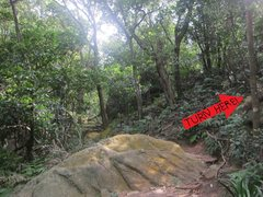 Rock Climbing Photo: Turn here!