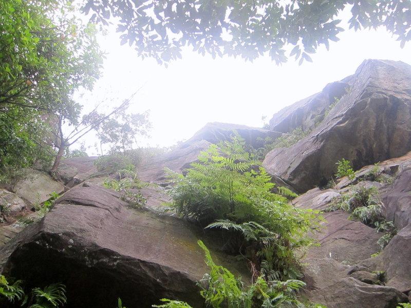 Rock Climbing Photo: Overhang wall, left side