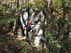 Rock Climbing Photo: Tenn Shine