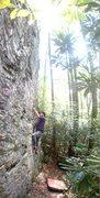 Rock Climbing Photo: near the start on Subterranean Homesick