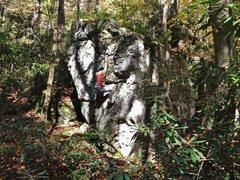 Rock Climbing Photo: Speakeasy boulder