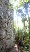 Rock Climbing Photo: Good pic of the Tennessee Pusher Boulder