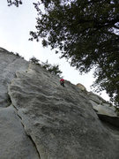 Rock Climbing Photo: Free Lance goes up the bolt line just to the right...