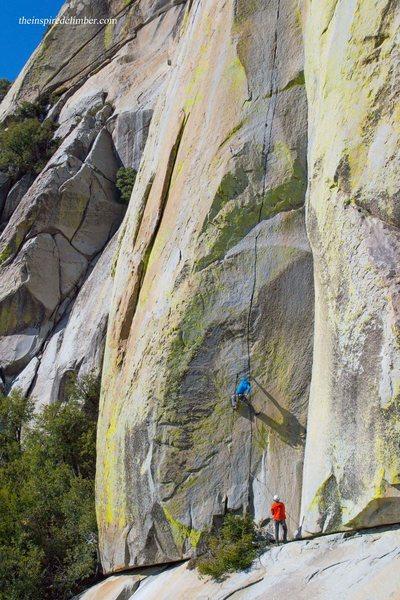 Aaron Cassebeer climbing The Emperor (Photo: Paisley Close)