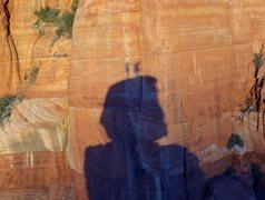 Rock Climbing Photo: Goliath Summit Shadows