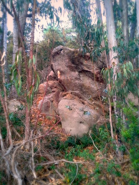 Rock Climbing Photo: Almost as if it were hiding in plain sight.