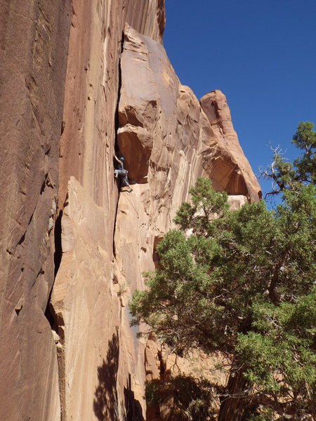 Rock Climbing Photo: laura-lynn workin it