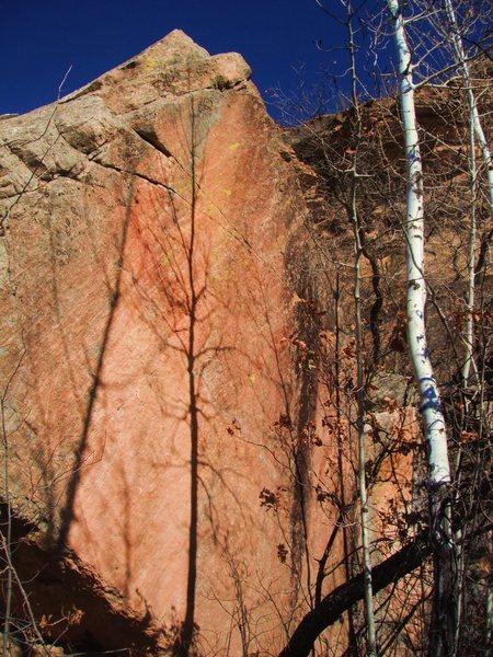 Rock Climbing Photo: Fire Mitigation Boulder.