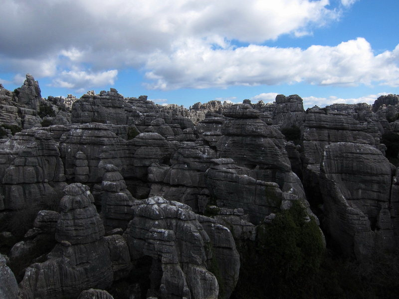Rock Climbing Photo: Just a part of the karst maze that is El Torcal.