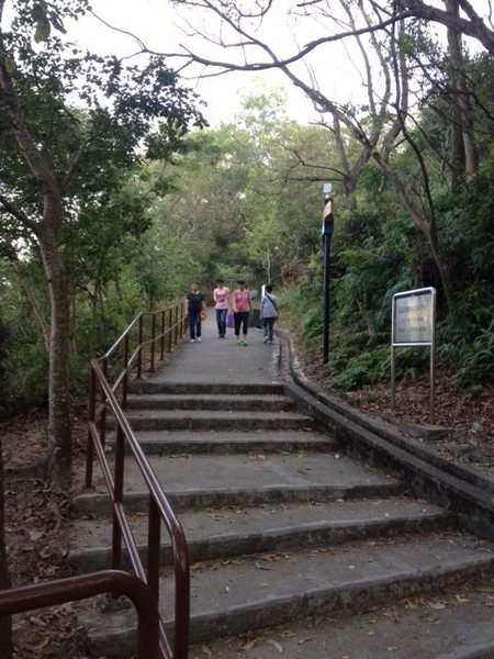 A typical Hong Kong 'wilderness' approach -- concrete steps and railing all the way up.