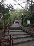 Rock Climbing Photo: A typical Hong Kong 'wilderness' approach -- concr...