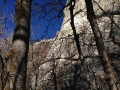 Rock Climbing Photo: Gritman's Traverse through the trees with some sha...