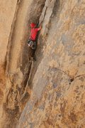 Rock Climbing Photo: Colorado Crack