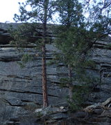 Rock Climbing Photo: Bright Phoebus follows the line of freshly drilled...