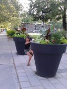 Rock Climbing Photo: Pot climbing in Montreal