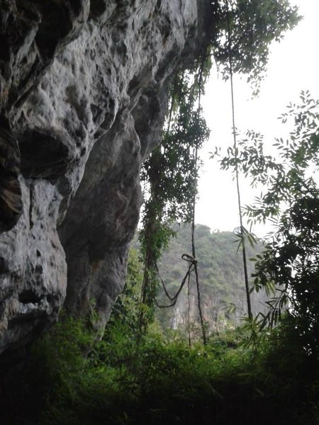 Rock Climbing Photo: Tonsai beach in Krabi, Thailand.