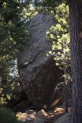 Rock Climbing Photo: A very tall boulder at PM
