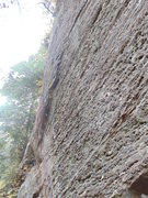 Rock Climbing Photo: Unfinished business with American Psycho 5.11a
