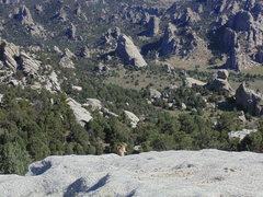 Rock Climbing Photo: Boulder field