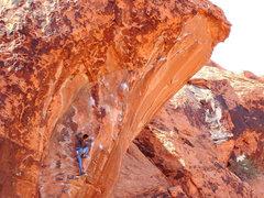 Rock Climbing Photo: The Prophet