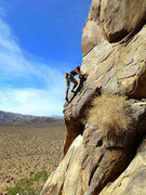Rock Climbing Photo: No crowds bandit…. Photo from MP Anonymous Collec...