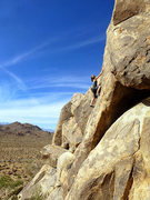 Rock Climbing Photo: Felicia Terry doesn't drink beer but sends B is fo...