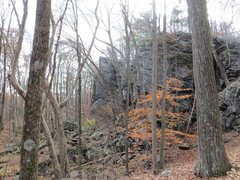 Rock Climbing Photo: Petro Cliffs from the trail.  Bushwhack left to ba...