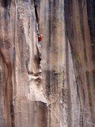 "Rock Climbing Photo: Fred pining for Juliet. May 2013. The ""Futuri..."