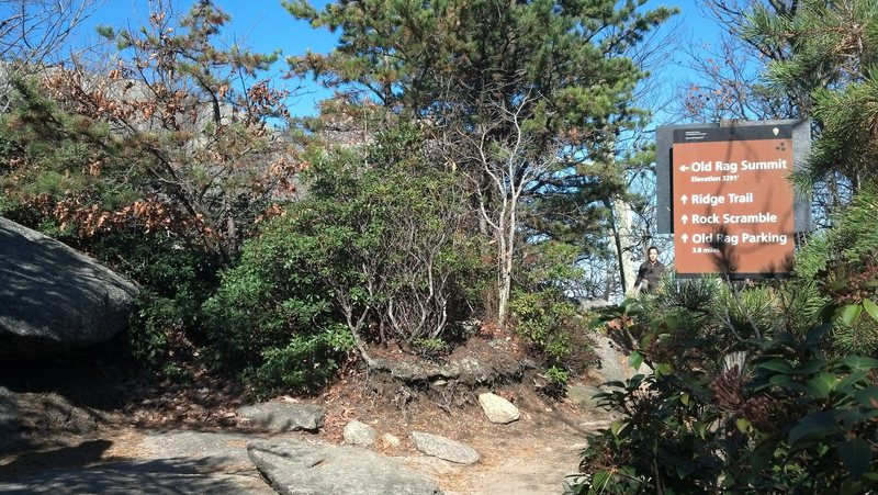 Rock Climbing Photo: To find Summit Crag, approach the summit.  If comi...