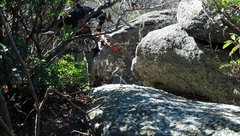 Rock Climbing Photo: You'll need to scoot under this bramble to get you...