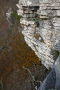 Rock Climbing Photo: Taken from scenic overlook.  Faints Roof area with...