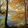 Borrowdale Valley, Derwentwater. Lake District, November 2013