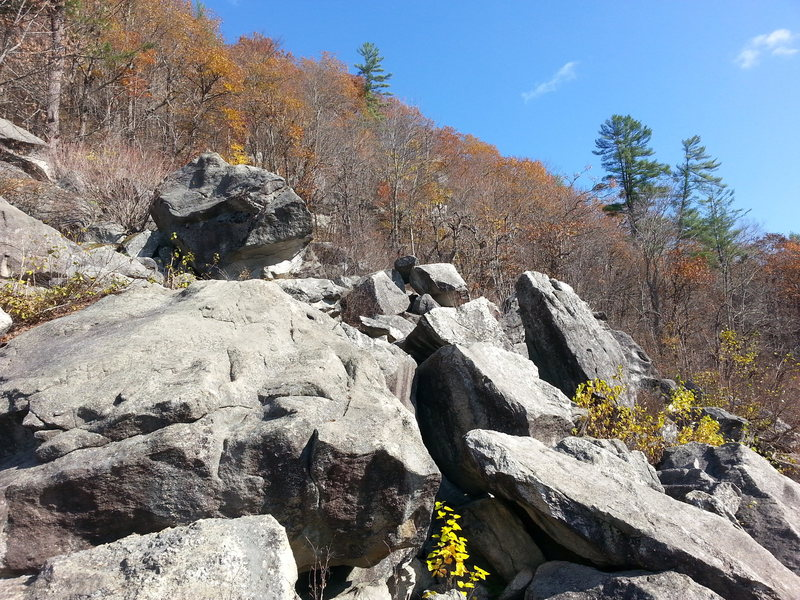 Rock Climbing Photo: Bear Mountain Boulders