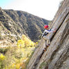 Bryson Fienup (age 6) enjoys a stellar Fall day at Sespe Gorge.