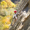 With beautiful Fall colors and perfect Fall temps, Bryson (age 6) enjoys Tree Route at Sespe Gorge.