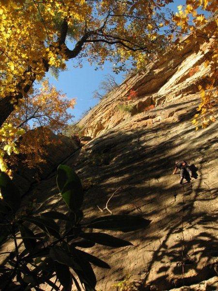 Rock Climbing Photo: 5.10 slab at Funk Rock City