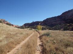 Rock Climbing Photo: Muleshoe Canyon