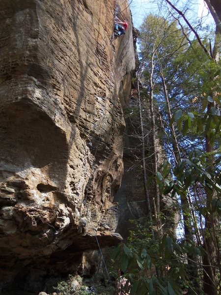 Rock Climbing Photo: King Me - Red River Gorge