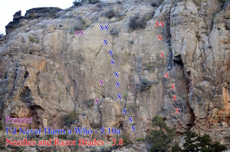 Rock Climbing Photo: Whoville Topo
