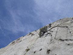 Rock Climbing Photo: Enjoying the beautiful finger crack.