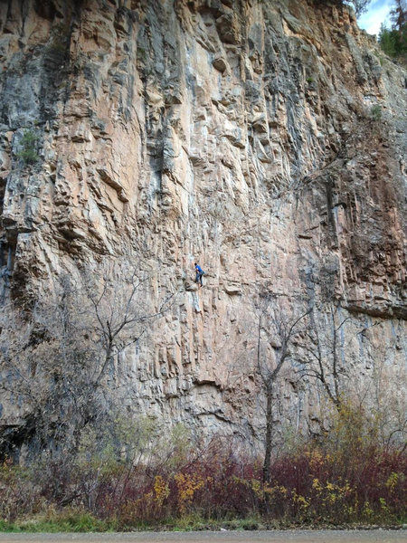 Rock Climbing Photo: Automatic Leg Spreader. The route ends at the roof...
