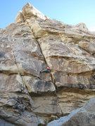 Rock Climbing Photo: Joyce on Crime of the Century