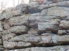 Rock Climbing Photo: Close-up of raven's nest