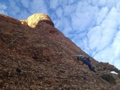 Rock Climbing Photo: coyote waits I think