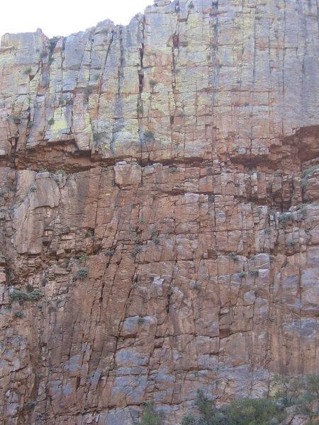 Rock Climbing Photo: 50\50 wall