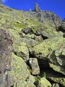 Rock Climbing Photo: Lichen is SO beautiful!