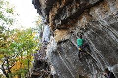 Rock Climbing Photo: Bottom Feeder 5.13a Rumney, NH