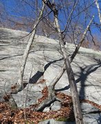 Rock Climbing Photo: Pretty sure the crack between the trees is the sta...