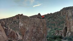 Rock Climbing Photo: Nick getting set to clean Severed Member...perfect...
